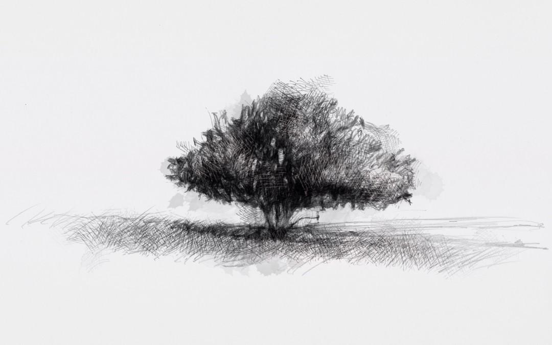Hardy bush