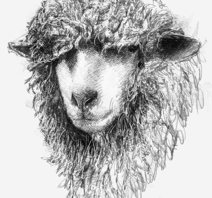Fluffy head